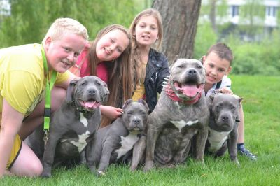 kids_and_pits